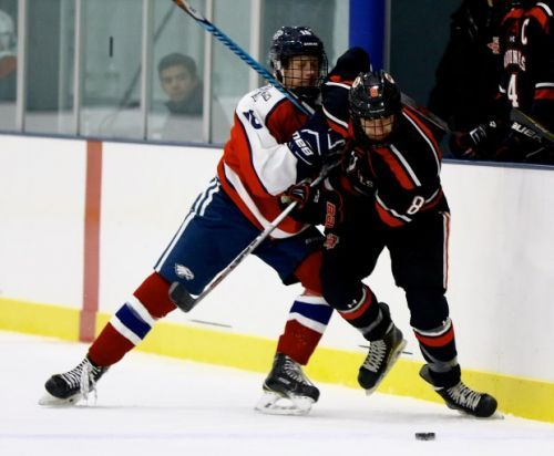 Division 1 hockey preview: BC High, Pope Francis lead the way again