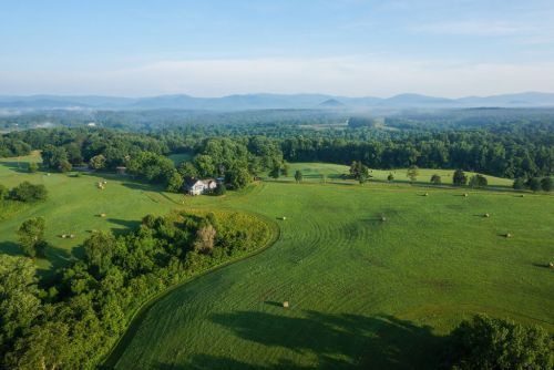 WanderLove: A Guide to a Girl's Weekend in Charlottesville