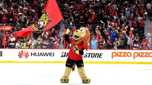 Senators fans reportedly create fake Twitter accounts to defend team after viral Uber video