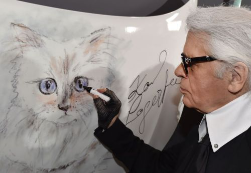 Late fashion designer Karl Lagerfeld's cat could inherit millions