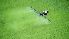 Court Orders EPA To Ban Chlorpyrifos, A Pesticide Linked To Brain Damage In Kids