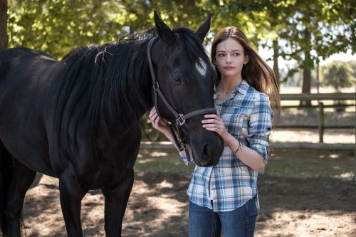 'Black Beauty' review: Disney's remake is a heavy-handed tear-jerker