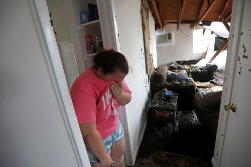 Here's how you can help the victims of Hurricane Michael