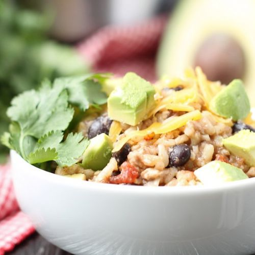 Instant Pot Salsa Chicken Rice Bowl