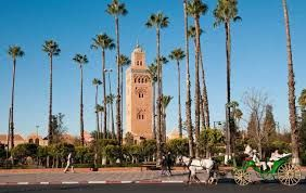 Morocco's first tourism office to be launched in India