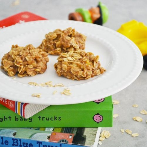 5-Ingredient Toddler Oatmeal Cookie