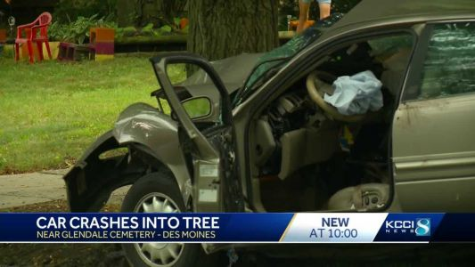 Police investigate car crash into tree
