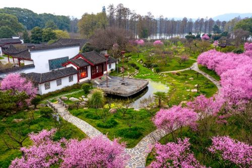 Wuhan has a plum of a tourist attraction