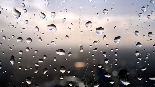 Rain brings a wet start to the week; will it last through Thanksgiving?
