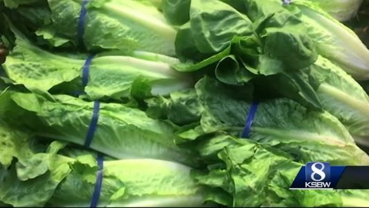 Local ag industry responds to E.coli outbreak concerns