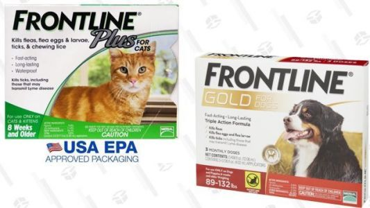 Ward Off Fleas and Ticks With An Extra 20% Off Frontline