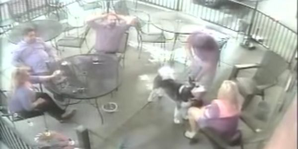 A woman who stopped to pet a dog in a restaurant was bitten on the face and needed eye surgery
