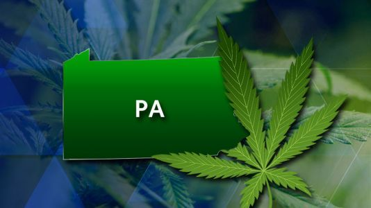 Legalized marijuana would bring $581 million tax windfall for Pennsylvania, auditor says