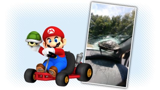 Turtle-Into-Windshield Collision Gives Stark Reminder Of The Grim Reality Of Mario Kart