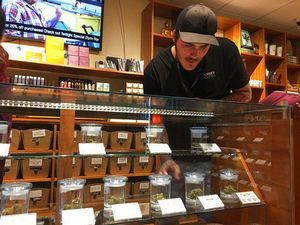 California readies for legal pot business in new year