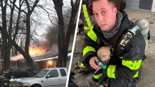 Firefighters rush into burning home to save family's small dog