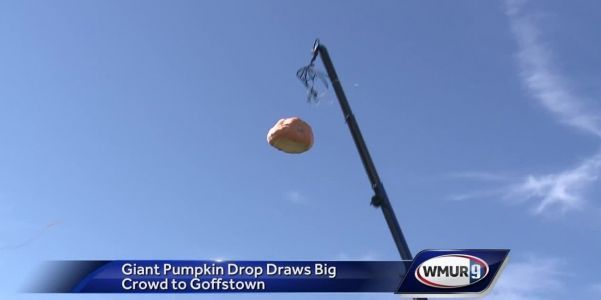 WATCH: 1,500-pound pumpkin dropped into giant inflatable pool