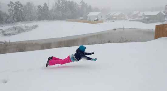 Snow diving and snow dogs: Enjoying another blast of winter in the South