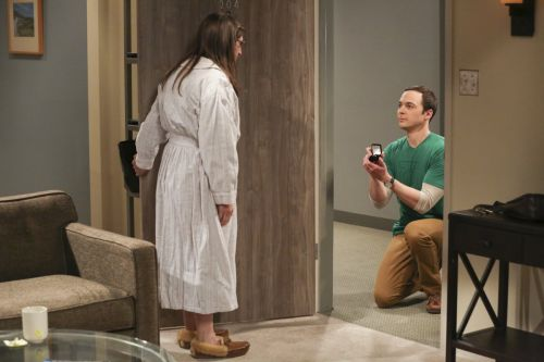 After months of waiting, 'The Big Bang Theory' finally answered the question on everyone's mind