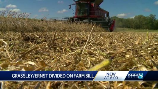 Iowa's Republican senators remain divided over farm bill
