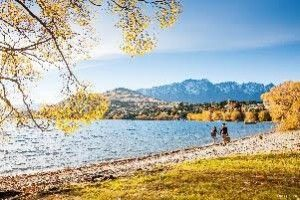Tourism In New Zealand On The Up and Up