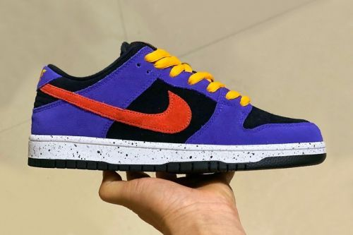 An ACG Terra-Inspired Nike SB Dunk Low Surfaces