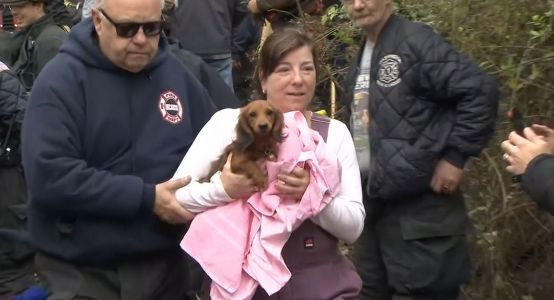 'Gut-wrenching': Video shows emotional reunion after dog gets trapped in pipe for 24 hours