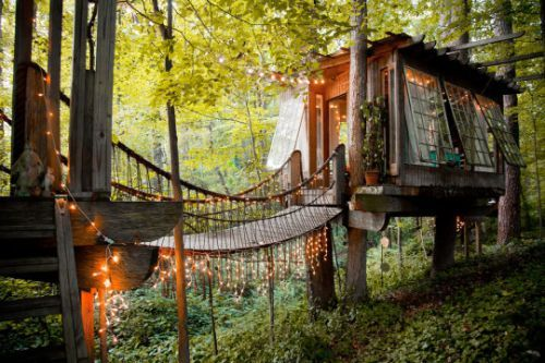 10 Best Treehouse Rentals In The US