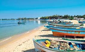 Tunisia shows signs of tourism recovery