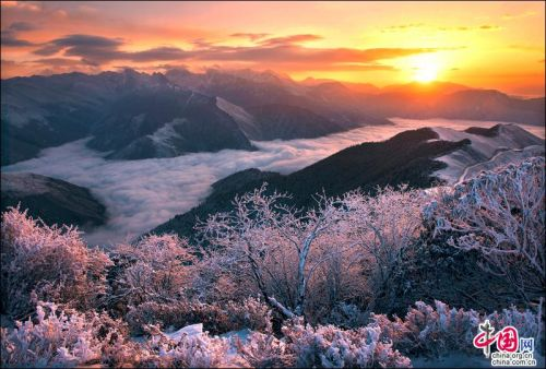 Places to chill out in Sichuan - Ya'an