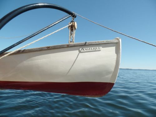 The Freedom of the 3-Day Effect on a Maine Windjammer Cruise on the Angelique