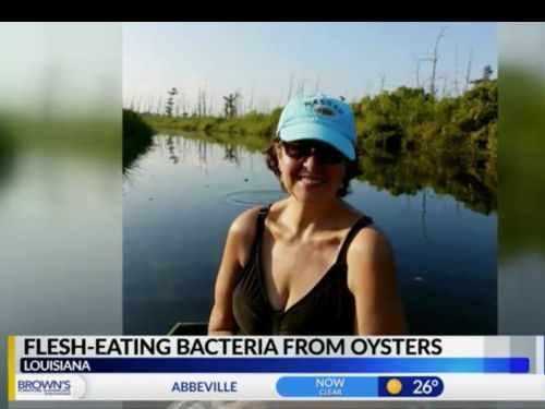 A woman died after contracting flesh-eating bacteria from eating raw oysters - here's why a food poisoning expert avoids the food
