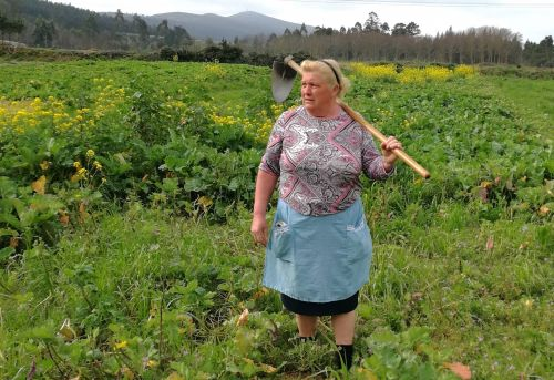 The internet says this female potato farmer is Donald Trump's lookalike