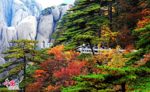 Mount Huangshan: best place to explore autumn
