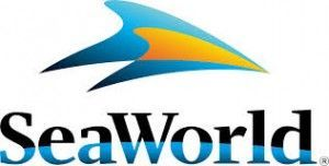 Yoshikazu Maruyama appointed as the chairman of SeaWorld Entertainment