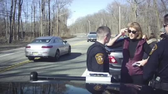 Dash cam video shows Port Authority official cursing at officers during traffic stop