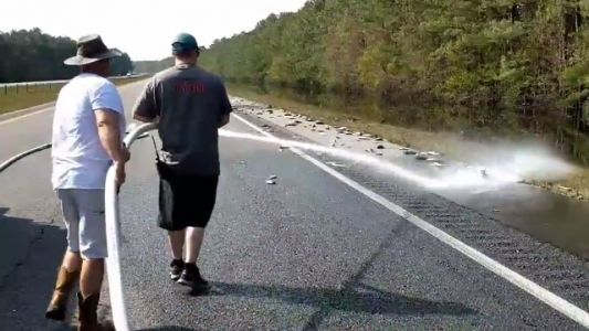Florence flooding: Fire department washes stranded fish off interstate in North Carolina