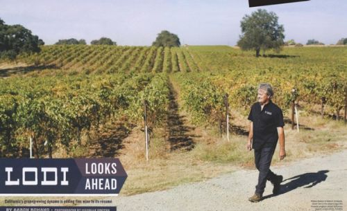 """The Wine Spectator gives credence to Lodi's """"rising tide"""" of premium winegrowing"""