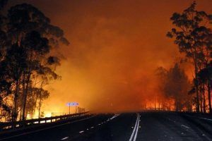 Bushfire cuts off NSW towns as 90km/h wind gusts forecasts