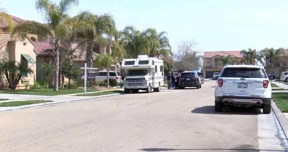 1-year-old boy playing in front yard mauled to death by neighbor's Rottweilers