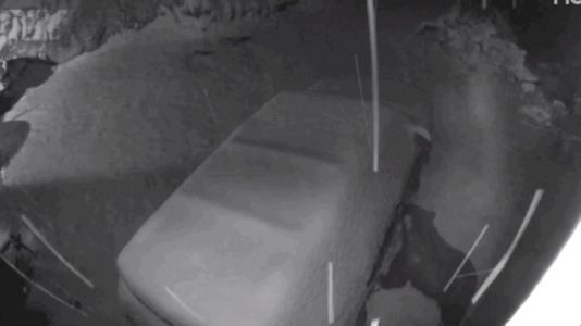 Watching This Bear Casually Open This Car's Doors Is Freaking Me the Hell Out