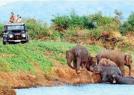 Sri Lanka Tourism enhanced its initiations to attract more Chinese tourists