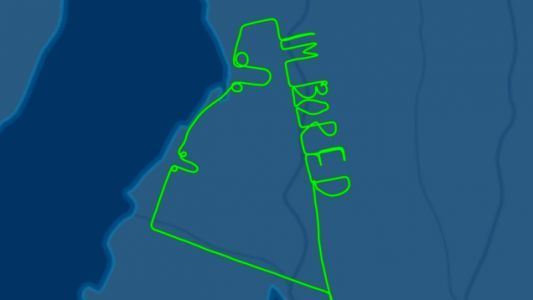 Bored Pilot Writes 'I'm Bored' and Draws Two Dicks in the Sky