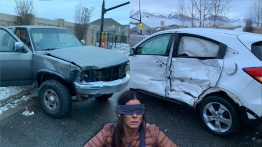 Someone Actually Drove Blindfolded, and Crashed, for the Bird Box Challenge