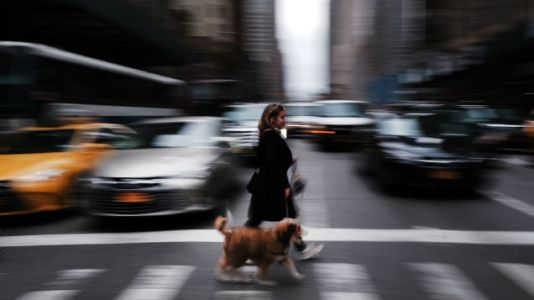 Traffic Noise Could Hurt More Than Your Ears