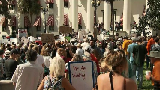 'Help us': Survivors of the Florida school shooting flock to state capitol to address gun control