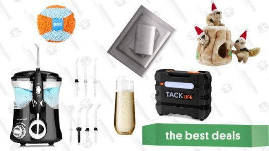 Friday's Best Deals: Dog Toys, Tire Inflators, Champagne Glasses, Water Flossers, and More