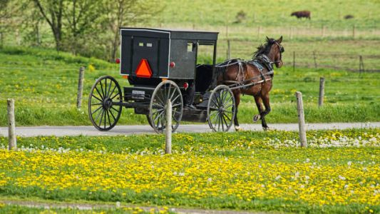 The Amish horse-and-buggy DUI, explained