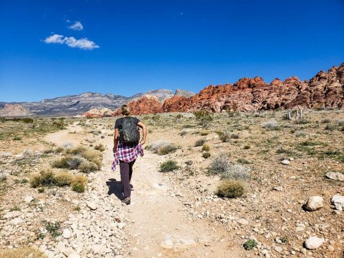 4 Incredible Day Trips from Vegas