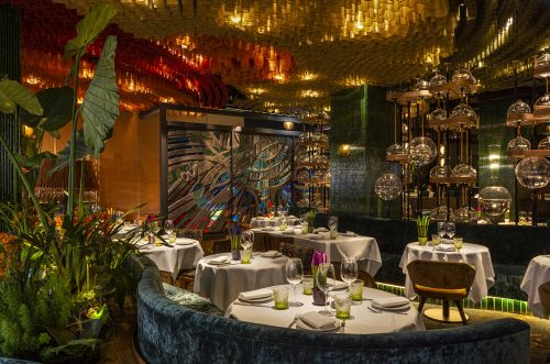 Amazónico London Review: The Jungle Comes to Mayfair